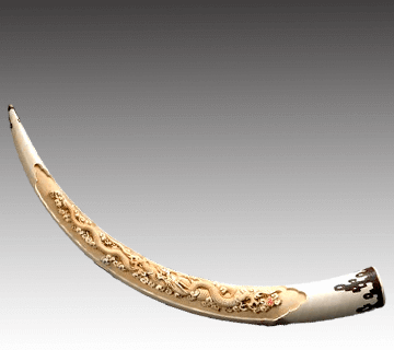 【象牙】一本牙彫刻 雲龍彫り