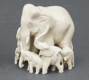 象牙の定義と象牙の種類
